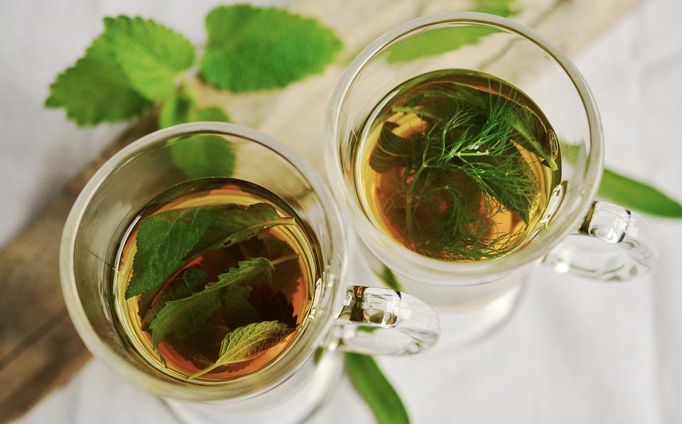 Benefits of Herbal Medicine